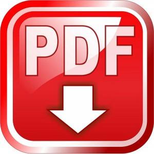 PDFicon2